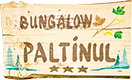 Vila Paltinul