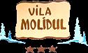 Molidul Villa