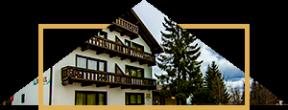 iconic-vila-bradul-cazare-cheile-gradistei-fundata