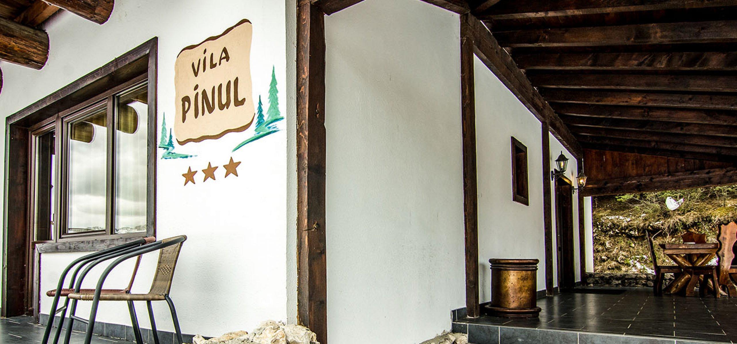 Vila Pinul g 2
