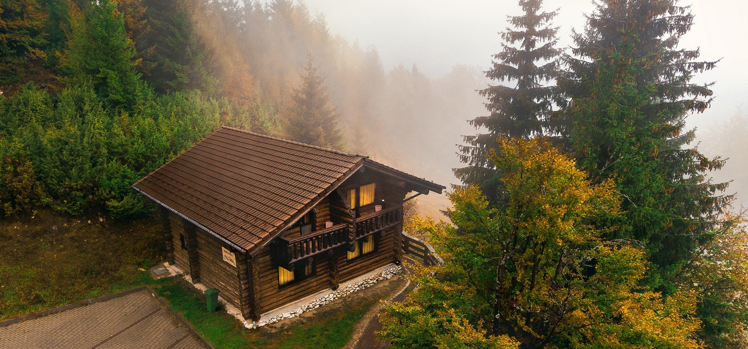 vila-paltinul-vedere-montana-cheile-gradistei-fundata