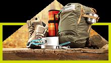 Drumetii montane (Hicking)